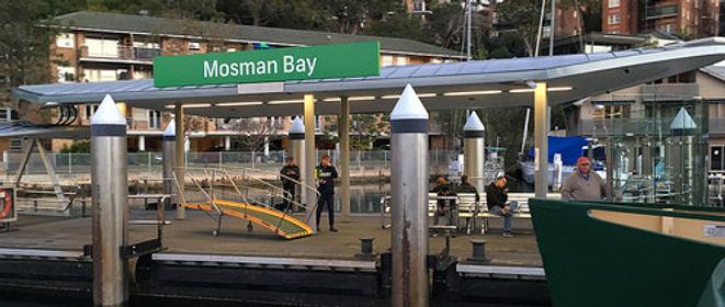 blocked-drain-plumber-mosman