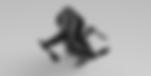 אין וינטרו - רוני קרפיול - צילום רוני קר