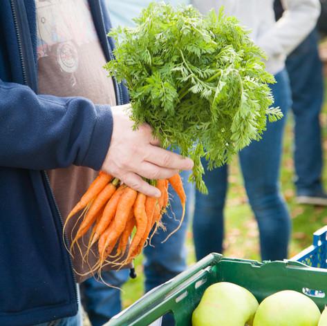 ©sturman.co.uk -Box Farm Shop