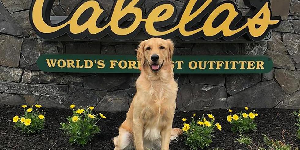 Cabela's Dog Days