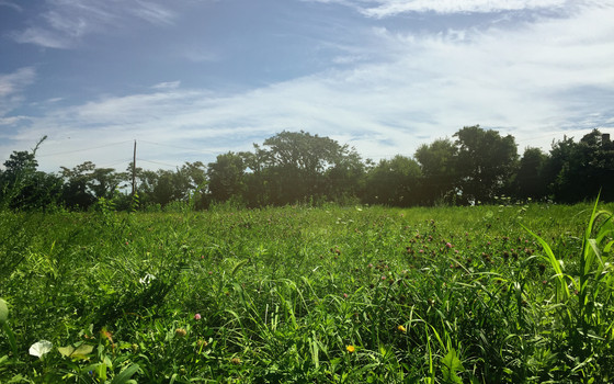 The True Value of Vacant Land