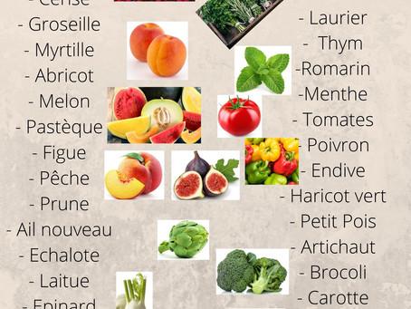 Fruits et légumes du mois de juillet