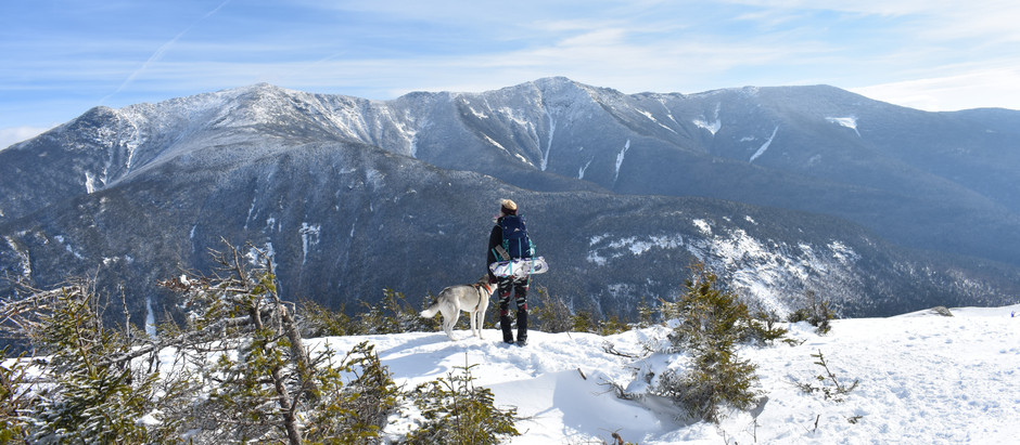 Hiking at Cannon; A Mountain to Table Experience