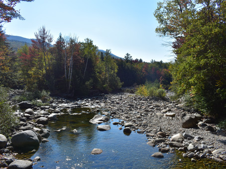 Owls Head: Backpacking, Bushwhacking and New Friends