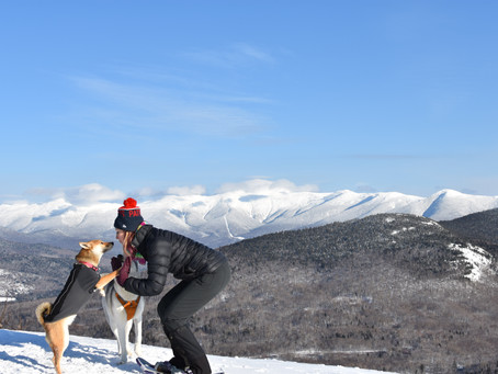 Middle Sugarloaf: A Chilly End to 2017