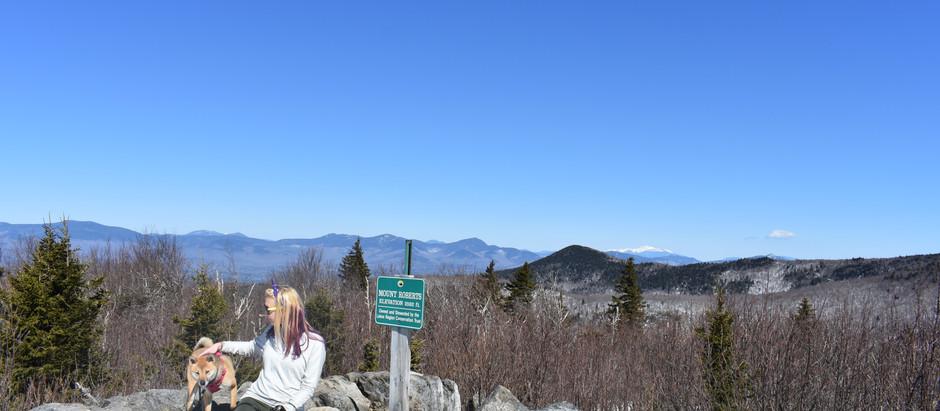 Mt. Roberts; Hello Spring