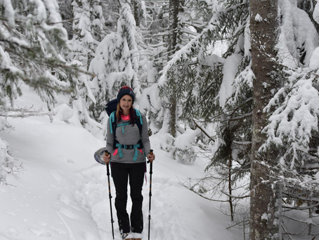 Starr King & Waumbek: Snowshoeing, Weather, and a Missing Blaze