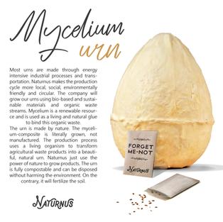 Masterthesis mycelium urn