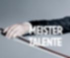 MEISTER TALENTE-1.png