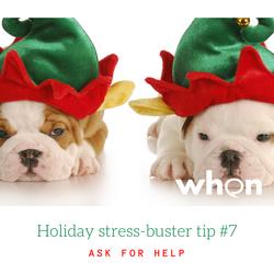 Holiday SB 7 help