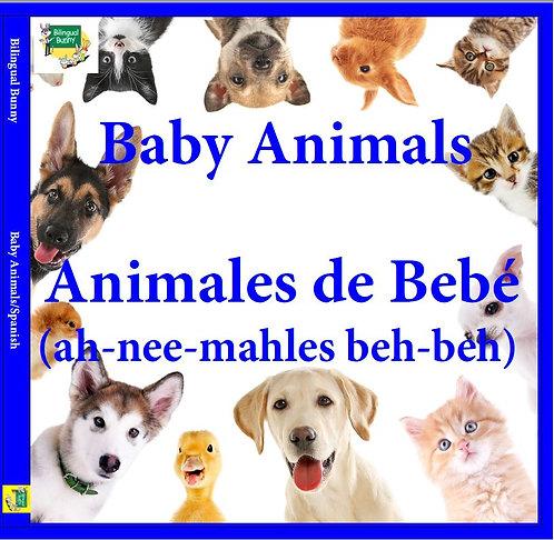 Bilingual Bunny Baby Animals