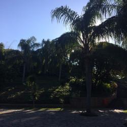 Parque Natural do Penhasco