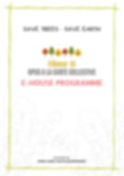 DL-E-Programme (1).png