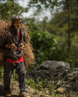 Farmer in Trashigang