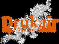 logo_drukair.png
