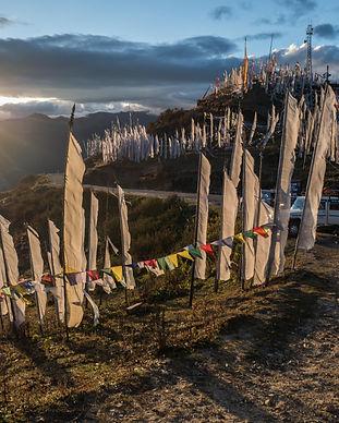 Chelela Pass, Bhutan