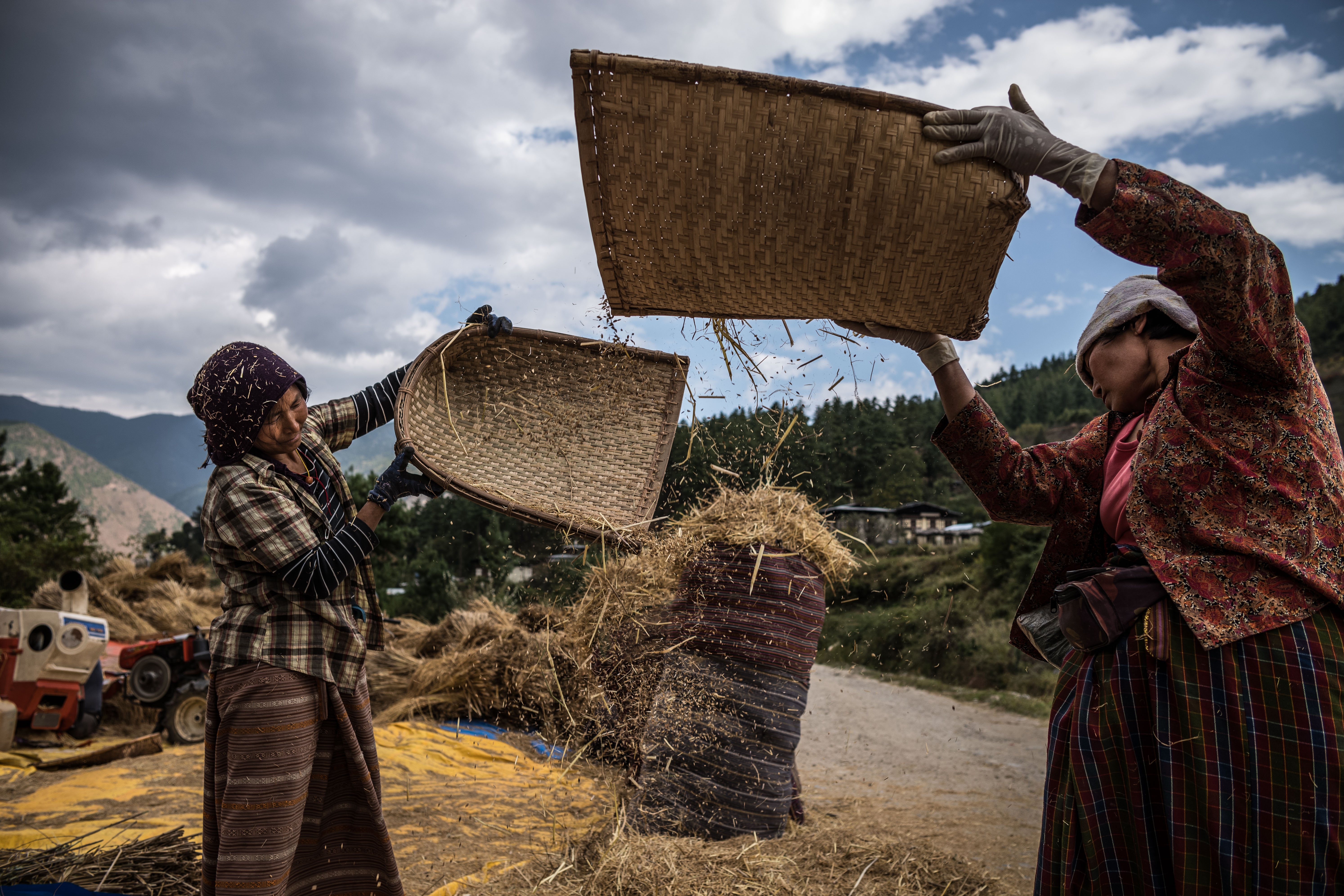 Rice winnowing in Bhutan