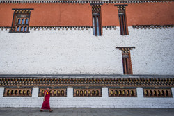 Authentic Experience in Bhutanence
