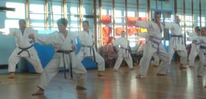 Training and Kyu Grading June 2008