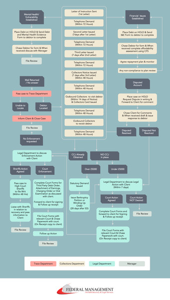 Infographic - Flow chart