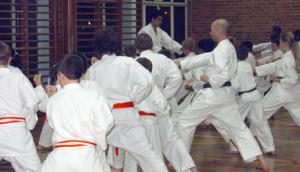 Course & Kyu Grading November 2008
