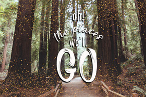 Mui Woods Postcard - Photoshop