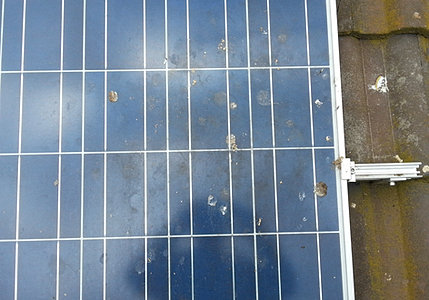 Solar Panel Cleaning Geelong