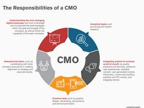 Virtual CMO Infographic