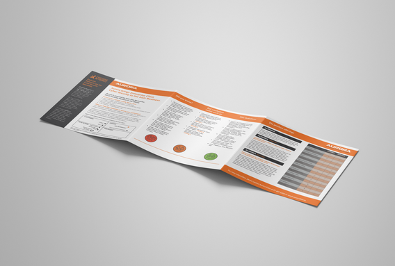 Exclusive Networks_tri-fold_brochure_bac