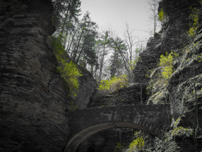 Watkins Glen Falls State Park