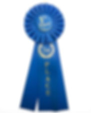 blue ribbon.jpg