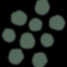 Zilla_GraphicElements_Flower2-WEBRES (1)