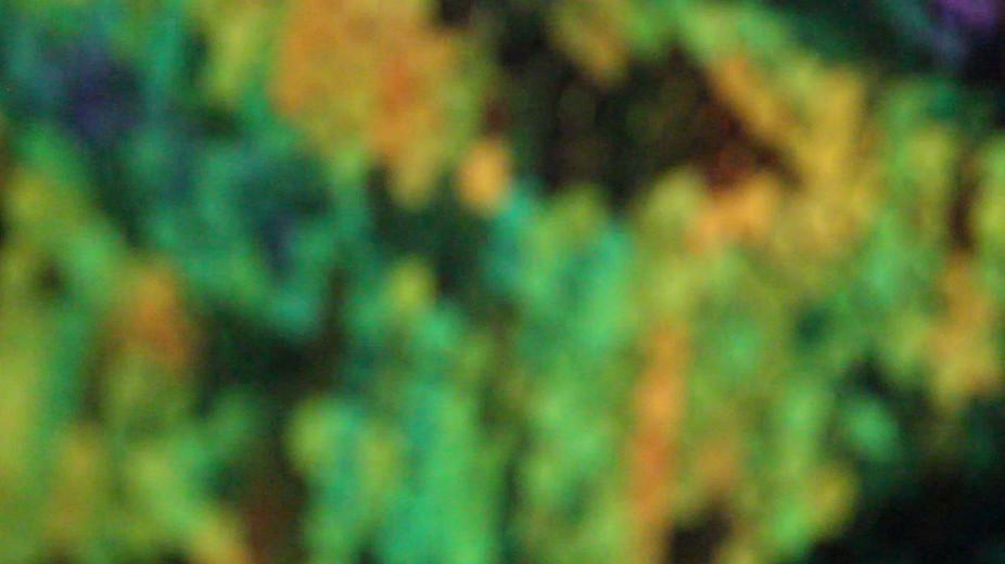 abstract pillow green.jpg