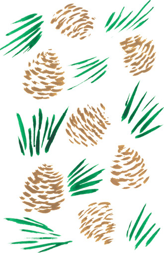 pine cone  (2017)