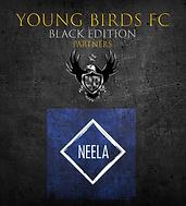 YBFC_ICC20_Neela.png