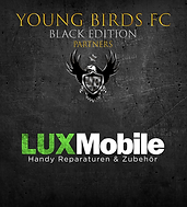 YBFC_ICC20_LuxMobile_2.png