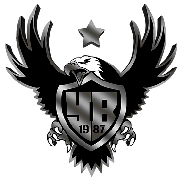 YoungBirds_Logo_bLACK_3D.png