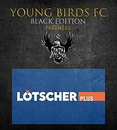 YBFC_ICC20_Lötscher.png