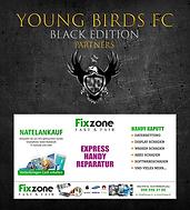 YBFC_ICC20_FixZone.png