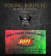 YBFC_ICC20_ITCGmbH.png