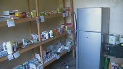 Pharmacy and Fridge