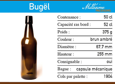 Fweb Bugël 500.jpg