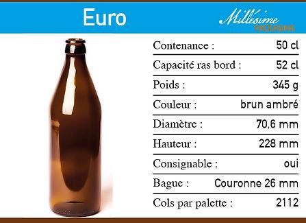 Fweb Euro 500.jpg