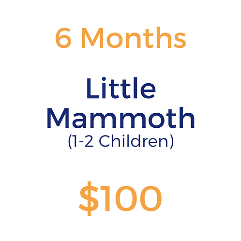 Six Month Little Mammoth (1-2 children)