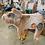 Thumbnail: Folkmanis Grunting Pig