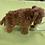 Thumbnail: Douglas Wooly Mammoth
