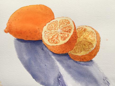 Still Life: Vitamin C - Oranges