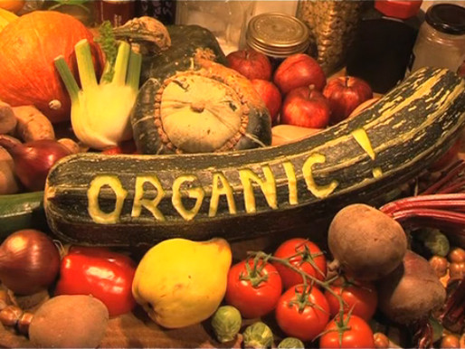 Organic Craze: What You Need to Know