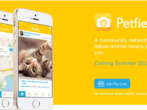 [BRANDED CONTENT] Selfie? Wefie? It's time to take a Petfie