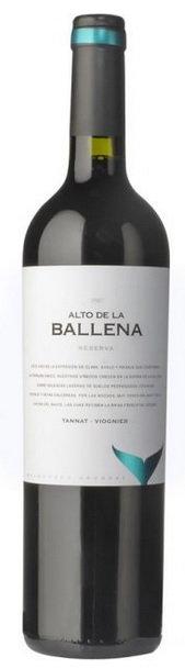 Alto de la Ballena, Tannat Viogner 2013
